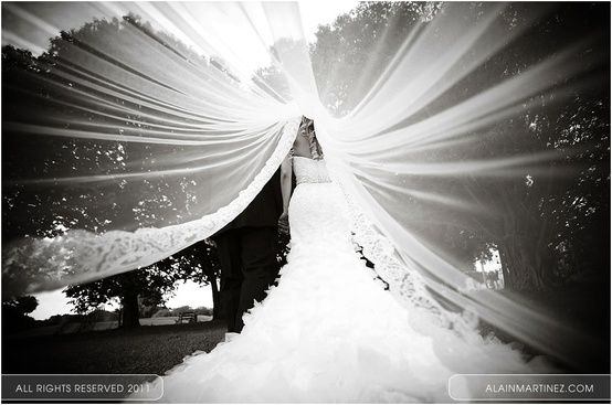 under the veil picture. Definitely should do this one :)