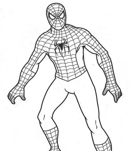 Spiderman Coloring Pages Free Coloring Pages Coloring Books Toddler Colouring In Spiderman Coloring Sheet Spiderman Coloring Coloring Books Baby Spiderman