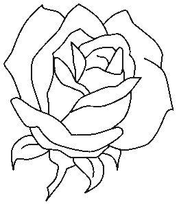 Coloriage Fleurs et plantes ! | Fleur dessin facile, Dessin de roses, Dessins faciles