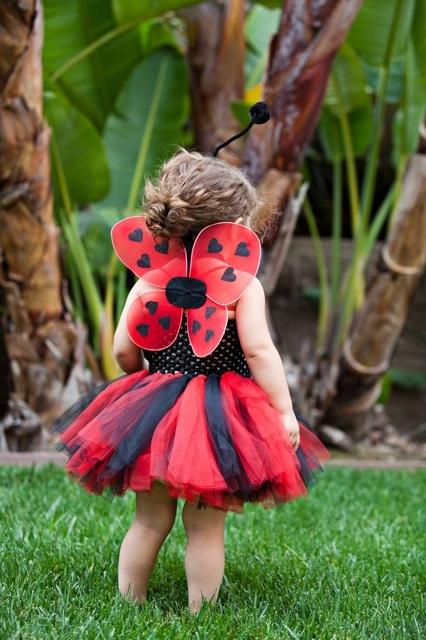 Lady Bug costume idea