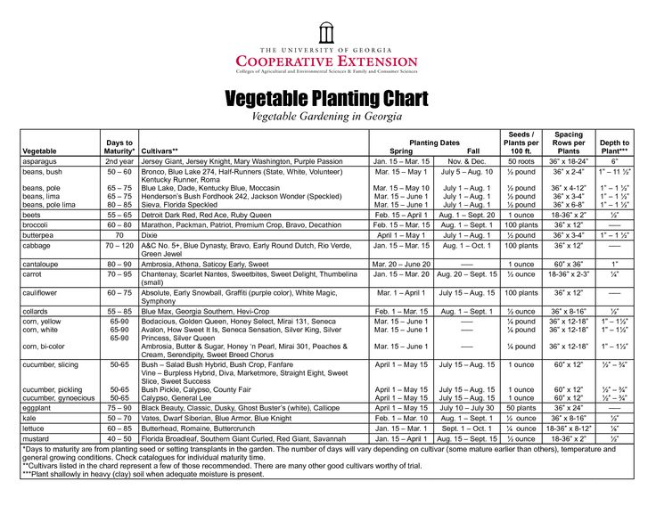 The 25 best Vegetable garden planner ideas on Pinterest Garden