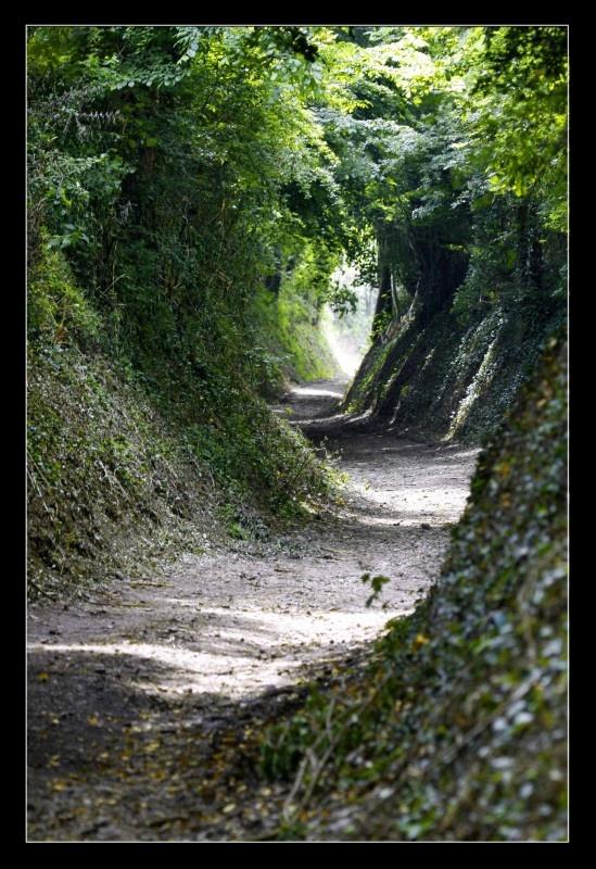 Holle weg in Zuid-Limburg