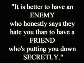 """Frenemy...someone who puts you down, tells you (often lying) bad things someone else allegedly said about you...then expects you to believe they """"care."""" Really?"""