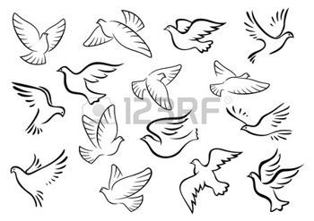 dove flying: Pigeon and dove birds silhouettes in sketch style for peace or love concept design