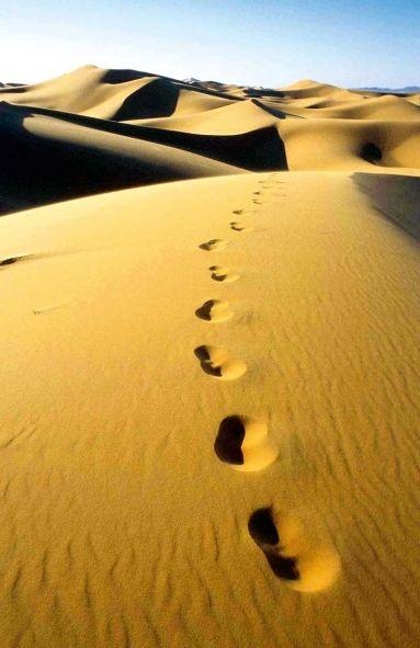 BLOG DA AMLEF: Vem, Senhor, com o teu povo caminhar!