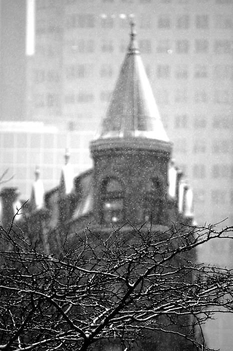 "A snowy January morning brought me out to shoot Toronto's ""Flatiron"" building. I wanted to shoot it in an unconventional way, by focusing on the tree in the foreground to help tell the story of a snowy day. That also helped to focus on the snow flakes falling against the backdrop of the building. #Toronto, #Flatiron, #snow"