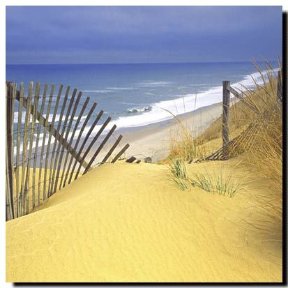 Beach Fence, Square on canvas Price: $25 Ships worldwide  http://www.thecanvasartfactory.com.au  #art #nature #beach #coast #ocean #canvas #design #home #wallart