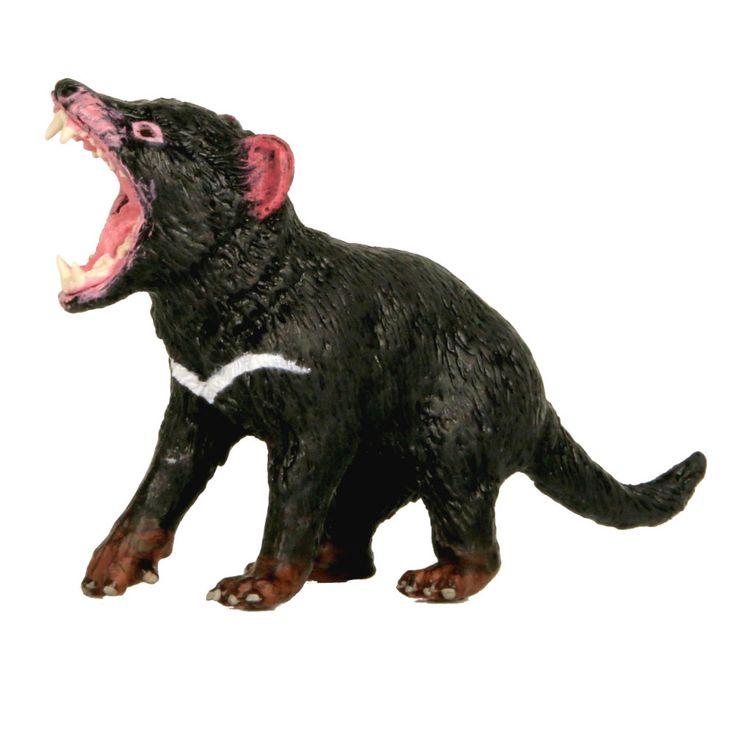 Tasmanian Devil Male
