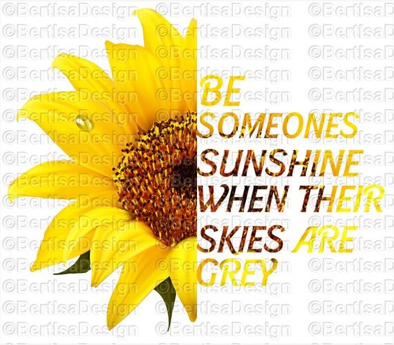 Sunflower Be Someones Sunshine When Their Skies Are Grey