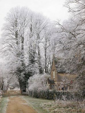 """Hoarfrost, Down Ampney Village, Gloucestershire.  Hoarfrost refers to white ice crystals, deposited on the ground or loosely attached to exposed objects such as grass, glass or leaves.  They form on cold, clear nights when conditions are such that heat radiates out to the open sky faster than it can be replaced from nearby sources such as wind or warm objects.  The name hoar comes from an Old English adjective that means """"showing signs of old age""""; in this context it refers to the frost that…"""
