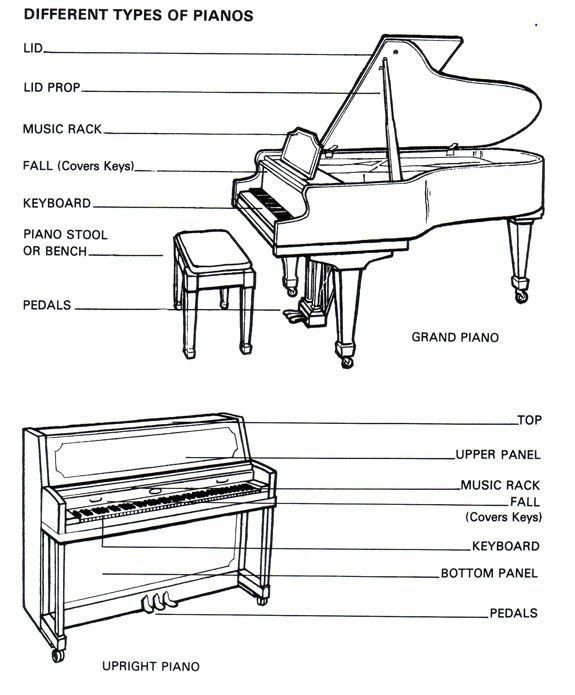 13 Best Piano Care Explained Images On Pinterest Piano