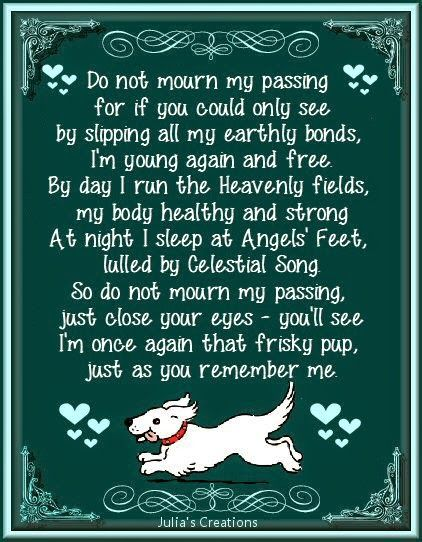 Loss Of A Dog Quotes 19 Best Pet Goodbye Quotes Images On Pinterest  Grief Pets And Cats