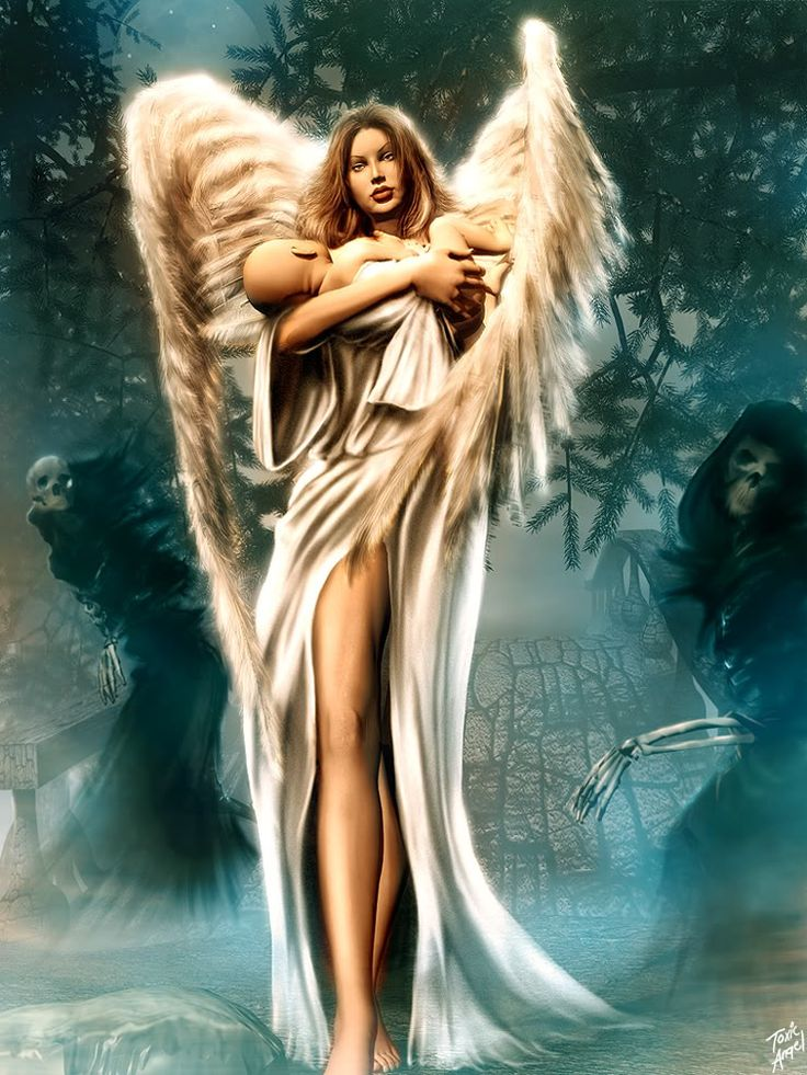 Male Guardian Angels | Psychic Medium, Morgana Starr