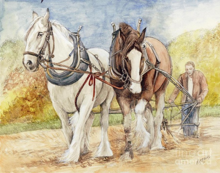 Shire Horses Painting by Morgan Fitzsimons - Shire Horses Fine Art Prints and Posters for Sale