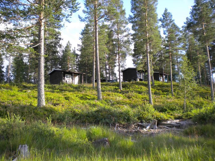 Studio Cabins from the water's edge