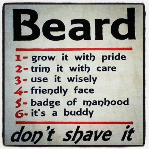 .: Golden Rules, Epic Beards, Beards Men, Beards Care, Real Men, Beards Shaving, Beards Creative, Beards Rules, Beards Guide