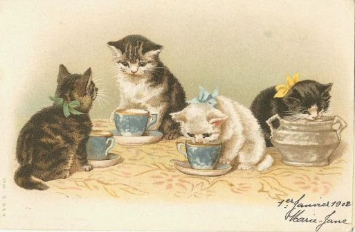 1902 Kittens with milk saucers postcard