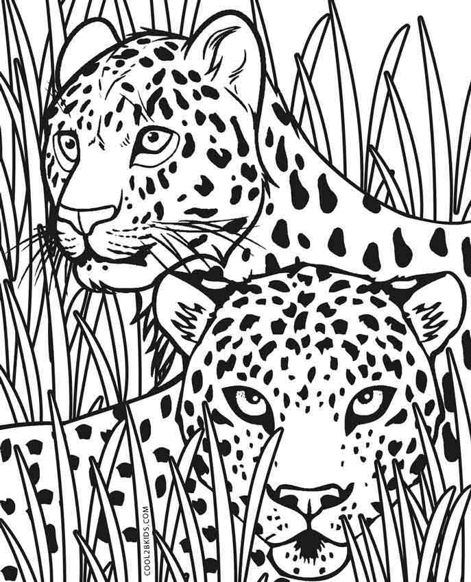 Pin By Maria On Coloring Pages Animal Coloring Pages Zoo Animal Coloring Pages Puppy Coloring Pages