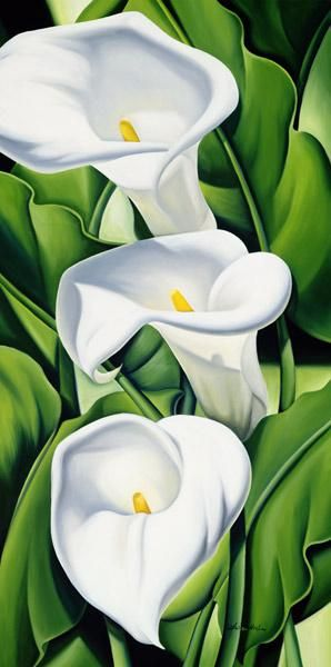 Catherine  Abel - Lilies                                                                                                                                                                                 Plus