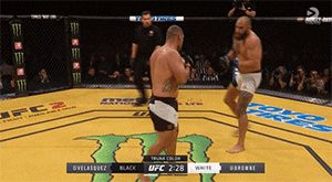 Cain Velasquez vs. Travis Browne — UFC 200 (July 9, 2016)