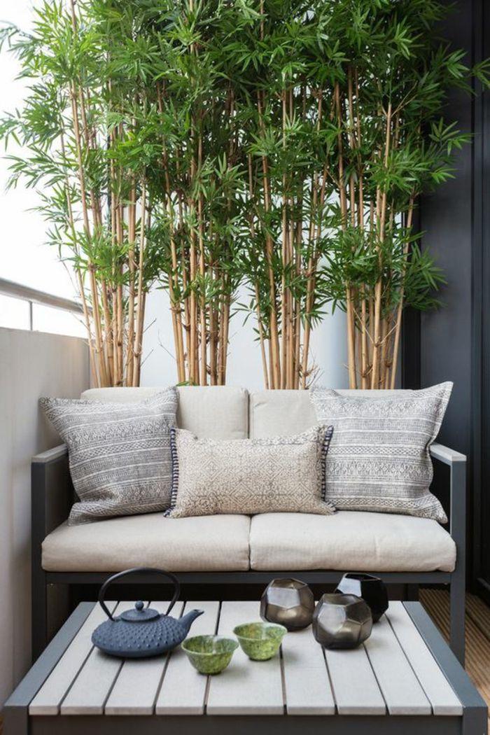 ▷ 1001 + Idées pour habiller un mur extérieur + murs végétaux originaux