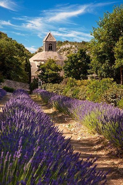 Lavender path, Proven