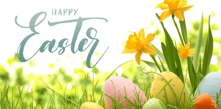 Easter 2017 Collection At Flora2000 http://couponscops.com/store/flora2000 #flora2000 #couponscops #EASTER_SALE_2017 #MOTHERS_DAY #BIRTHDAYS #OCCASIONS #FLOWERS #GIFTS #OFFERS #SPECIAL #OFFERS #PRICES Flora2000 Coupon Codes, Flora2000 Promo Codes, Flora2000 Discount Code, Flora2000 Voucher Codes, CouponsCops.com