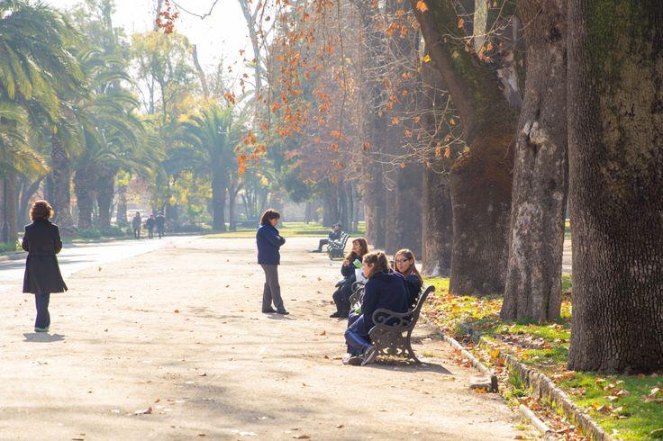 La Quinta Normal, el Parque Quinta Normal es un parque público ubicado en la comuna homónima en la ciudad de Santiago. Se ubica en el Barrio Matucana.