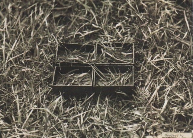 Ed Herring | Grass reorganisation (1969) | Available for Sale | Artsy