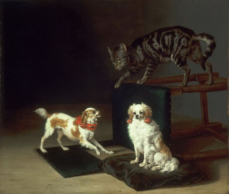 Paulus Potter Cat Playing with Two Dogs 1652