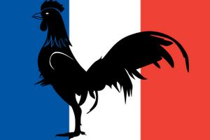 Le coq gaulois - destined to become a symbol of France thanks to a play on words: https://www.lawlessfrench.com/reading/coq-galois/