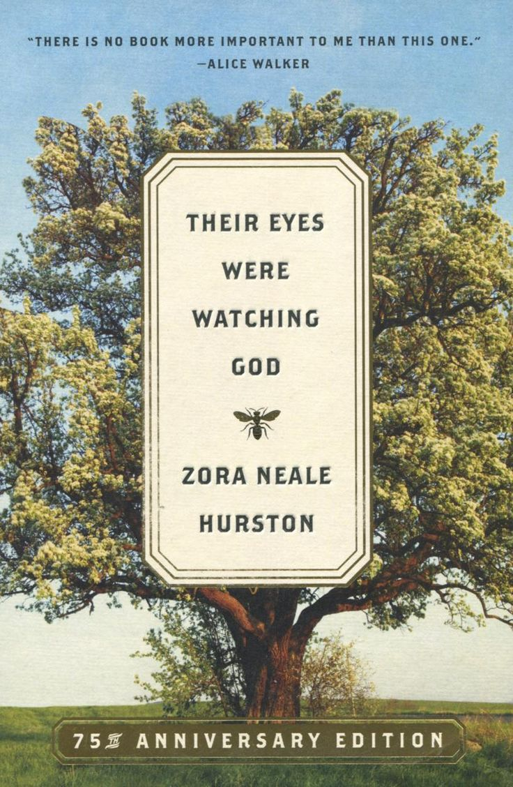 literary analysis of the novel their eyes were watching god by zora neale hurston By ariane redding  in the novel their eyes were watching god, by zora neale hurston, joe starks shows a lot of character development although it's almost all negative, he's a very interesting character to try to understand.