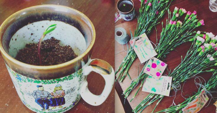 Tips voor een plantenruilfeestje