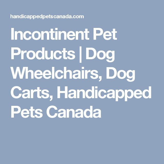 Incontinent Pet Products | Dog Wheelchairs, Dog Carts, Handicapped Pets Canada