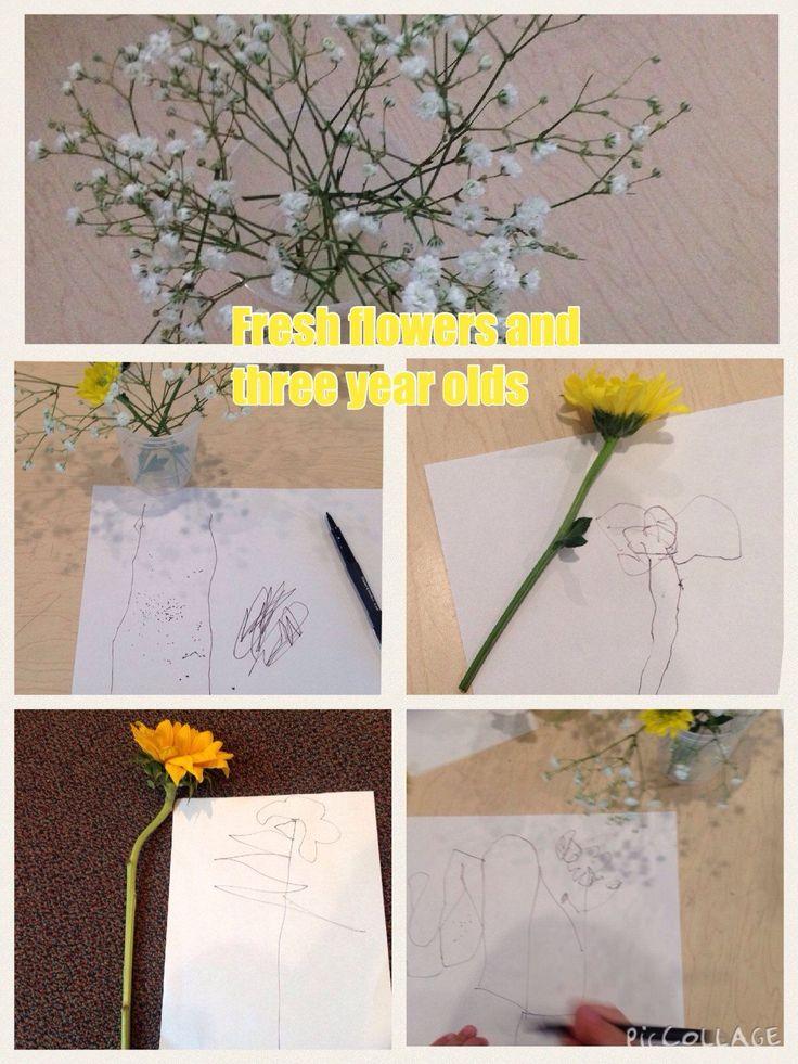 Sketching/drawing flowers