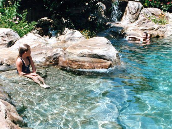 230 best Natural Pool & Pond Designs images on Pinterest | Backyard ...