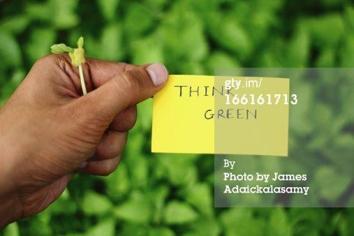 Stock Photo : Think Green