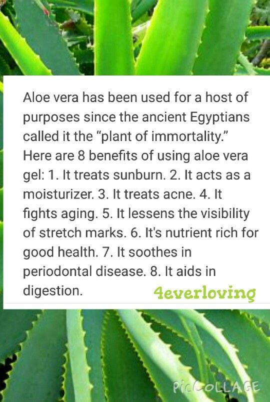 Aloe is good for you inside and out.  To find out more products follow the link.  https://www.foreverliving.com/retail/entry/Shop.do?store=GBR&language=en&distribID=440500058254