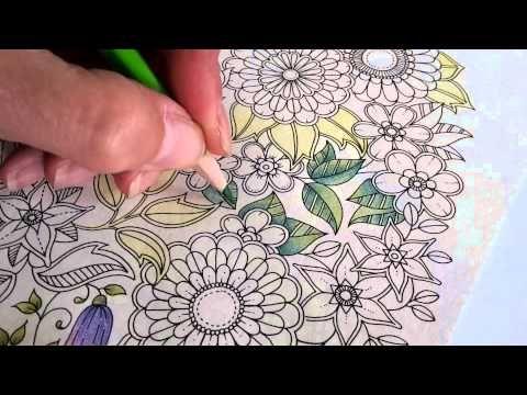 165 Best Johanna Basford Secret Garden Encharted Forest Video