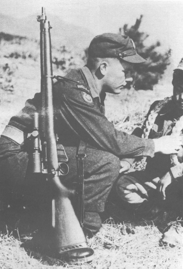 Ppcli Korean War sniper