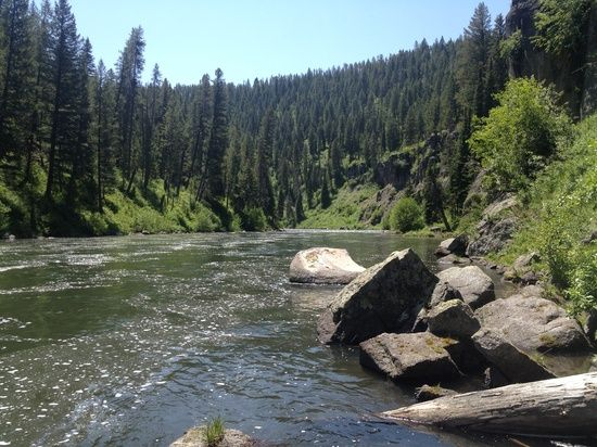 Fly Fishing Idaho Rivers | Idaho Fly Fishing / Henry's Fork of the Snake River