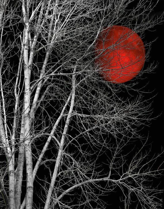 Black White Tree Red Moon Wall Art By Littlepiephotoart On Etsy A Few Of My Favorite Things Pinterest Purple And