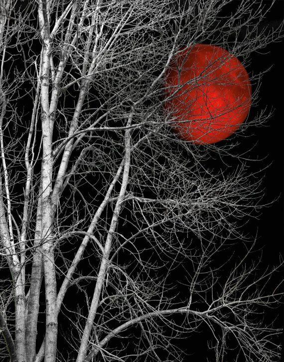 Black White Tree Red Moon Wall Art by LittlePiePhotoArt on Etsy