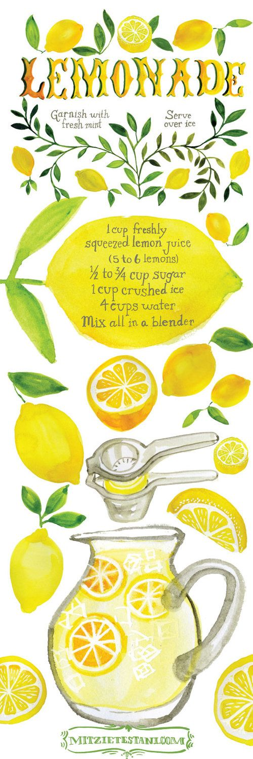Illustrated and hand lettered recipe for homemade lemonade by Mitzie Testani