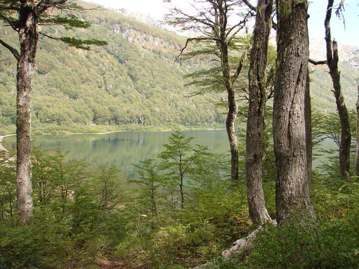 Parque Nacional Villarrica (CHILE)