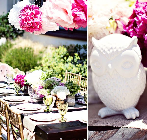 Gorgeous Vintage Style Owl Baby Shower