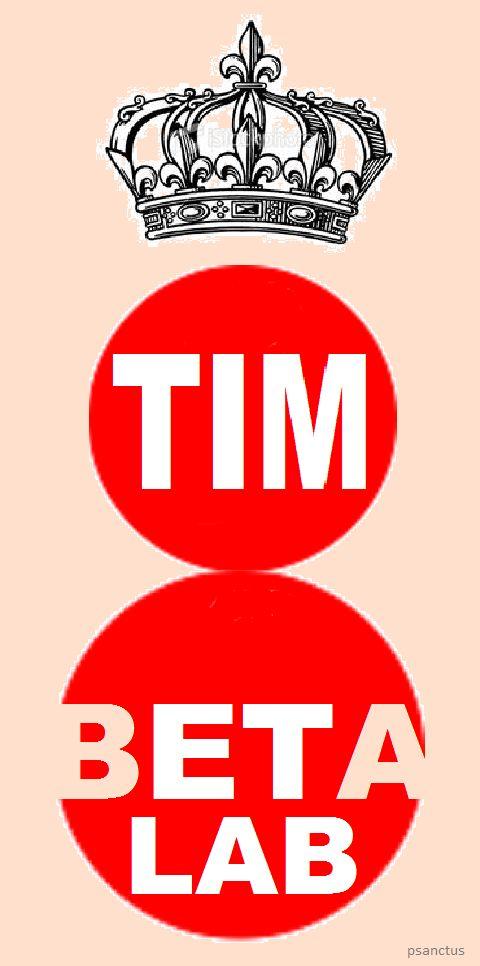 REI TimBeta Lab