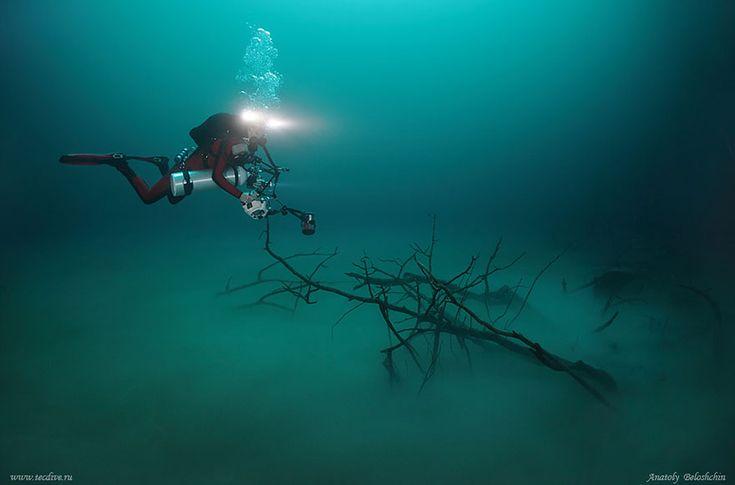 Hidden Underwater River Flowing Under the Ocean in Mexico   Bored Panda