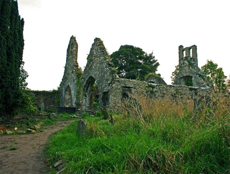 The ruins of St. Patrick's Church in Wexford.