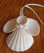 Sea shell angel - Now I know what to do with some of the shells I collected this summer! LOL                                                                                                                                                                                 Mais